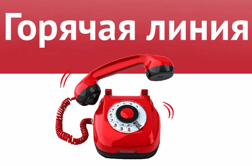 Телефон горячей линии Авито — как связаться с поддержкой
